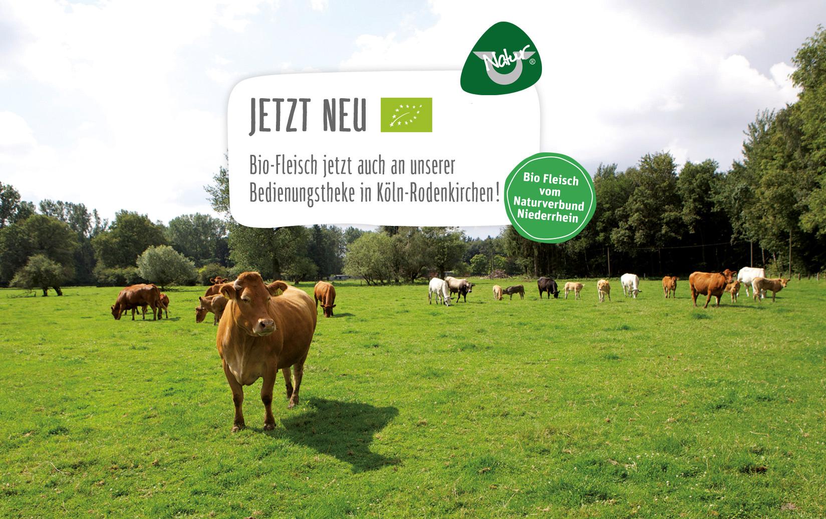 REWE Istas - Biofleisch jetzt auch in Köln-Rodenkirchen!