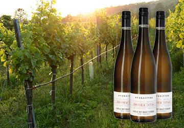 Der REWE Istas Wein des Monats März 2020