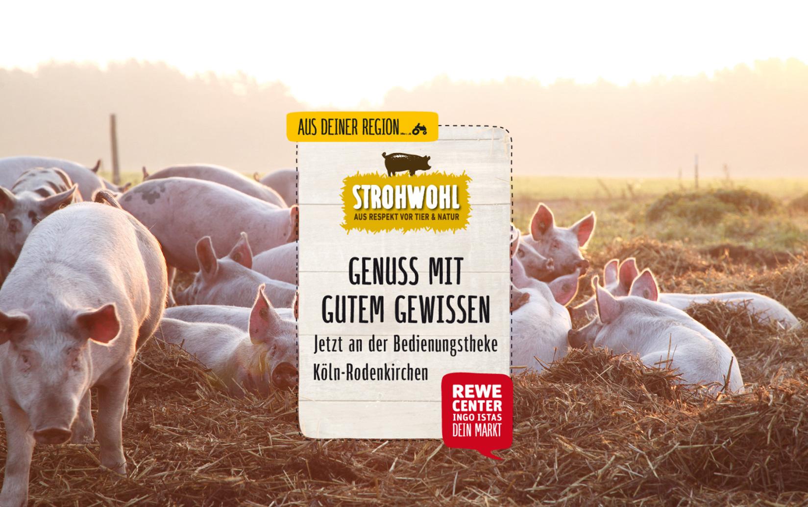 Strohwohl bei REWE Istas in Köln-Rodenkirchen