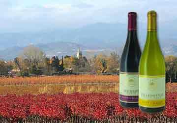 Wein des Monats im August 2017: Languedoc