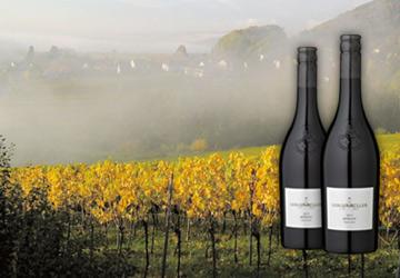 Wein des Monats im Dezember 2017: Lergenmüller Merlot