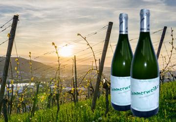 REWE Istas: Wein des Monats Juli 2017 - Sommerweisser von Krug