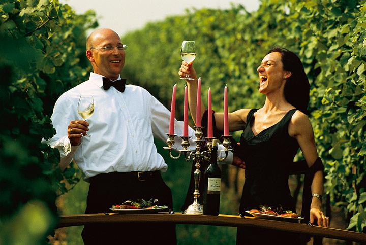 Unser Wein des Monats September vom Weingut Studier: HEROLDREBE Rosé aus der Pfalz
